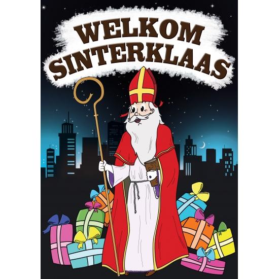 Welkom Sinterklaas versiering poster thumbnail