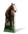 Decoratiebord paarden 190 cm