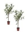 2x Olijfbomen kunstplanten-kunstbomen 65 cm in kunststof plantenpot