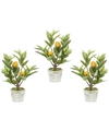 3x Citroenbomen-citrusbomen kunstplanten 45 cm in betonnen plantenpot
