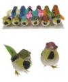 Decoratie vogel