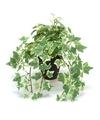 Groen-witte kunstplant klimop plant in pot