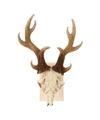Wanddecoratie herten schedel met gewei 23 cm